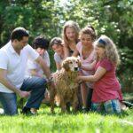 Model rodziny wielopokoleniowy czy autonomiczny?
